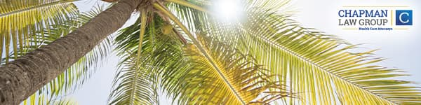 Image of a palm tree in Miami Florida where Chapman Law Group practices health care law.